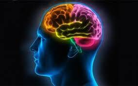 Psicoterapia cognitivo-comportamentale per curare l'ansia